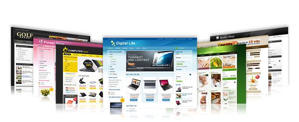 thiết kế web quảng bình